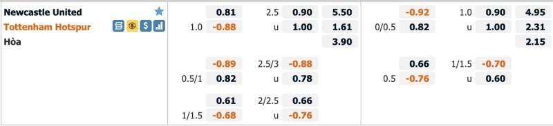 Thông tin bảng kèo, tỷ lệ Newcastle United vs Tottenham Hotspur